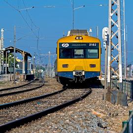 by Kishu Sing - Transportation Trains