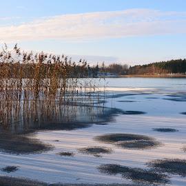 by Albina Jasinskaite - Landscapes Weather