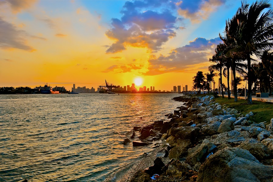 A Sun Entering The City by Raymond Hernandez - Landscapes Weather ( water, miami beach, sunset, palm trees, landscape )