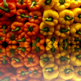 Two Colored Peppers  by Lope Piamonte Jr - Food & Drink Fruits & Vegetables