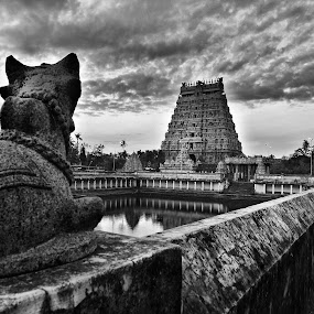 Thillai Natarajar Temple, Chidambaram, Tamilnadu, India by Muthu Kumar - Landscapes Travel ( water, tillai natarajar temple, sivan temple, siva, chidambaram, temple tower, shiva, temple, nandhi, india, gopuram, pond, wall, tamilnadu )