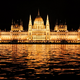 Budapest Parliament Building  by Nermin Smajić - Buildings & Architecture Public & Historical ( water, dunav, hungary, reflection, building, budapest, dark, night, donau )
