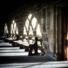 Durham Cloisters by Adam Lang - Buildings & Architecture Places of Worship ( durham, bench, church, cloister, cathedral )