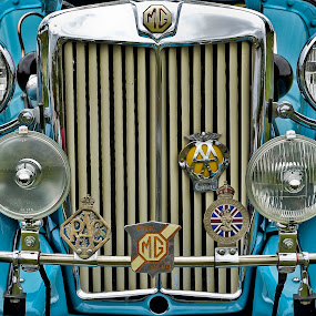 MG by Gene Myers - Transportation Automobiles ( shotsbygene, car, mg td, emblem, grill, headlights, blue, 1951, organization emblems, fenders, gene myers,  )