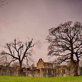 Netley Abbey by Richard Bull - Buildings & Architecture Places of Worship ( southampton, monks, ruin, netley, abbey )
