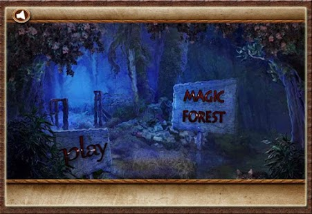 Magic Forest Hidden Objects