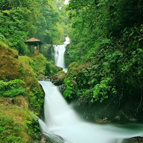 Gitgit Waterfall by Alit  Apriyana - Landscapes Waterscapes