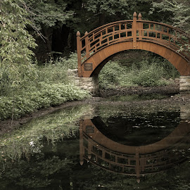 Tran by Rosette Doyle - Buildings & Architecture Bridges & Suspended Structures ( bridges forest asian reflection water,  )
