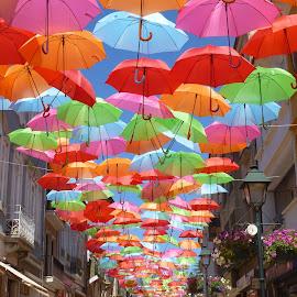 guarda chuvas by Maria Alice Paiva Santos - City,  Street & Park  Street Scenes ( candeeiros, flores, guarda chuvas, casas, cores )