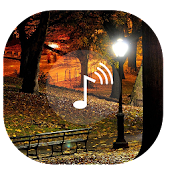 App Relaxing Night ~ Sleep Sounds APK for Windows Phone