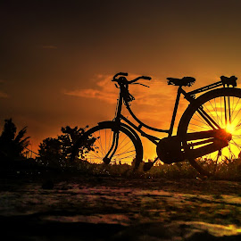 This is My Bike by Robins Selalu Ada - Transportation Bicycles ( orange, sunny, sunset, silhouette, summer, siluet, sunrise, golden hour )