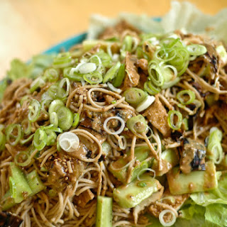 Eggplant Noodles Tofu Recipes