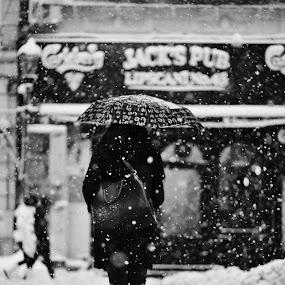Brave umbrella by Nicu Buculei - Black & White Street & Candid ( blackandwhite, winter, umbrella, street, snow,  )