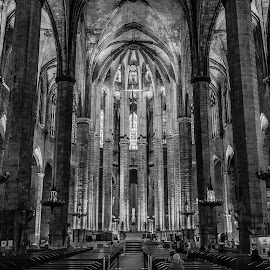 catedral del Mar, Barcelona by Roberto Gonzalo Romero - Buildings & Architecture Places of Worship ( blackandwhite, black and white, mar, cathedral, barcelona, catedral )