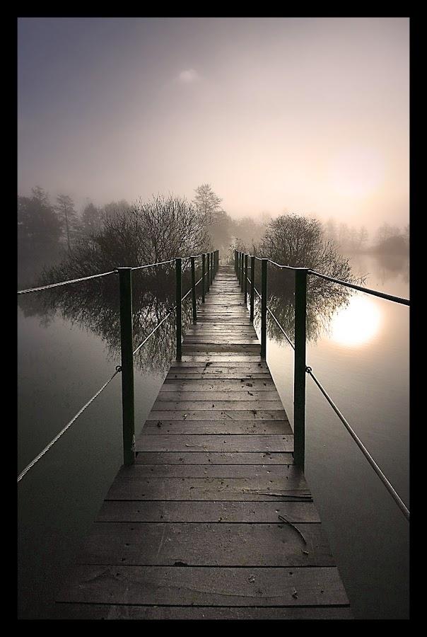 by Gregor Znidarsic - Landscapes Waterscapes ( water, mystical, fog, trees, lake, bridge, morning, watter, sun, river )