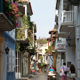 by Bente Agerup - City,  Street & Park  Historic Districts ( colombia, cartagena, buildings, streets, flowers )