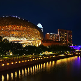 Esplanade Singapore by Welly Agus - City,  Street & Park  Night
