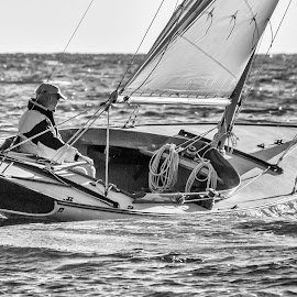 Sailboat on Tack by Carl Albro - Black & White Sports ( black and white, sailboat )