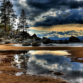 Tahoe Storm Reflections by Lee Molof - Landscapes Waterscapes