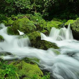 Gljun spomladi by Bojan Kolman - Landscapes Waterscapes