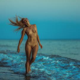 sunset on the sea by Dmitry Laudin - Nudes & Boudoir Artistic Nude ( nude, girl, sunset, woman, sea, body shape, surf, light, hair, foam )