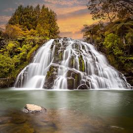 Owharoa Falls New Zealand by Anupam Hatui - Landscapes Waterscapes ( waterfalls, waterscape, colors, falls, scenic, owharoa falls, landscape )
