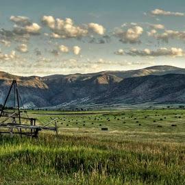 Hayfield by George Kremer - Landscapes Prairies, Meadows & Fields ( field, clouds, sky, hdr, vintage, hayfields, hay, meadow, bales, plains, meadow vintage )