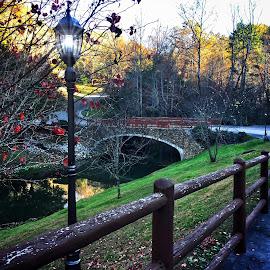Country Lane by James Bessel - City,  Street & Park  Street Scenes ( bridge lane fence river creek fall stone bridge )