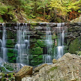 Waterfalls on stone dam by Michaela Firešová - Nature Up Close Water ( nature, autumn, green, dam, waterfall, forest, stones )