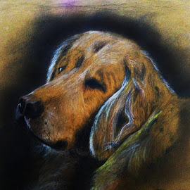 doggy by Ganesh LK - Drawing All Drawing