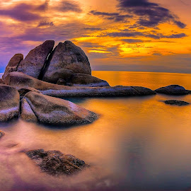 Coral Cove by Richard ten Brinke - Landscapes Waterscapes