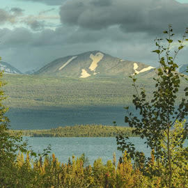 Skilak Lake by Patricia Phillips - Landscapes Travel ( lakes alaska summer skilak )
