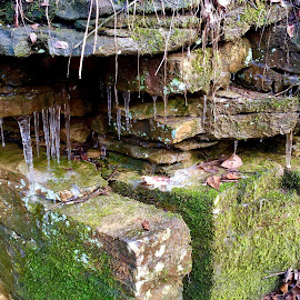 Icy creek by Amanda Burton - Nature Up Close Rock & Stone ( winter, nature, ice, creeks, rocks )