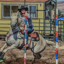Pole Bending by Jim Shafer - Sports & Fitness Rodeo/Bull Riding ( nevada, rodeo, cowgirl, western, western images )