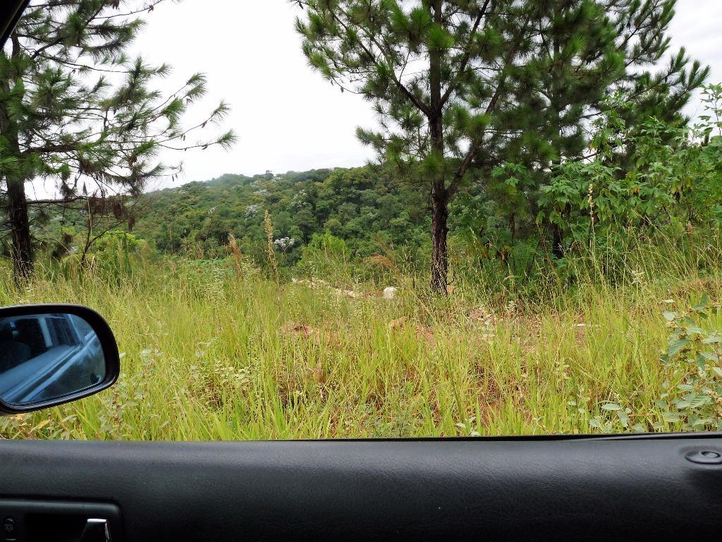 Terreno à Venda - Gramado
