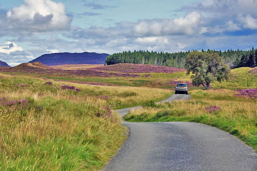 by Preslava Gancheva - Transportation Roads ( newtonmore, highlands, hills, glen, scotland )