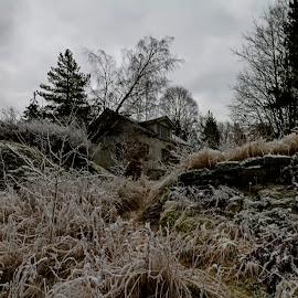 Frozen by Bjørn Bjerkhaug - Buildings & Architecture Homes