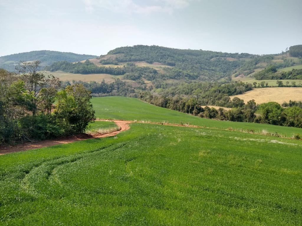 área rural á venda com fácil acesso á cidade e amplo uso da área no plantio