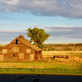 Montana Barn by Pam Jones - Buildings & Architecture Other Exteriors