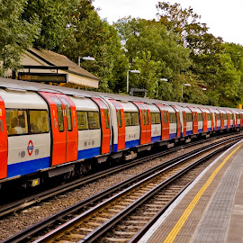 London Tube by Joao Fernandes - City,  Street & Park  Street Scenes ( red, london, tube, line, underground )