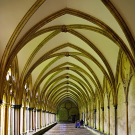 Cloisters ~ Salisbury Cathedral by Ingrid Anderson-Riley - Buildings & Architecture Places of Worship