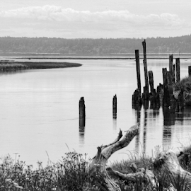 Stanwood  by Todd Reynolds - Black & White Landscapes