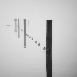 Lake Stevens  by Todd Reynolds - Black & White Objects & Still Life