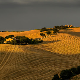 Italian Hills by Emanuele Zallocco - Landscapes Prairies, Meadows & Fields