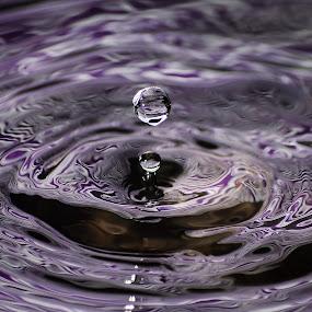 Purple Drop by Dan Girard - Abstract Water Drops & Splashes ( speedlight, reflection, purple, ripples, sphere, water drop )