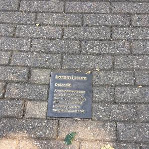 Lorem ipsum Dolor sit Amet consectetuer adipiscing elit, sed diam nonummy nibh euismod tincidunt ut laoreet dolore magna aliquam erat. I have no idea what this plaque is doing there at Artis, the zoo ...