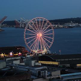 Seattle Vista from Rooftop by Tara Bauman - City,  Street & Park  Vistas