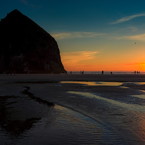 The Lone Biker by Carrie Cole - Landscapes Sunsets & Sunrises ( water, sony nex 7, oregon, carrie cole photography, 2013, cannon beach, sea, tourism, ocean, scenic, beach, coastline, attraction, carrie cole, haystack rock, sunset, august, oregon coast, cole summer road trip )
