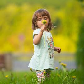 Girl by Michael Eberth - Babies & Children Children Candids ( children, candid, girl, summer, child, flower, dandelion, kids )