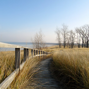 Peace by Flora Ehrlich - Novices Only Landscapes ( dunes, america, blue water, landscape, usa, pure michigan, boardwalk, trail, lake beach, state park, dune grass, walkway, alone, isolated, park, grass, lake huron, midwest, huron county, pt crescent, lake, great lakes, quiet, scenic, fence, michigan, background, peace, pt austin, hike )